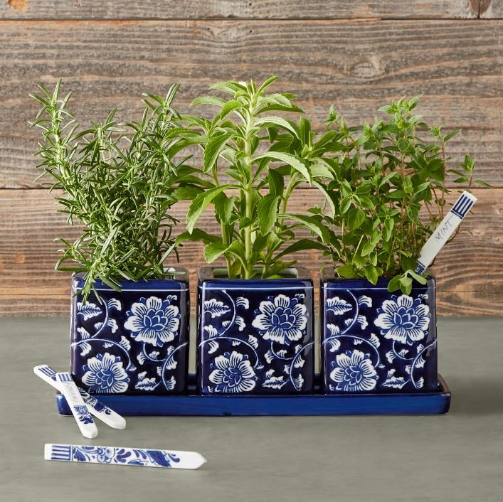 window herb garden sonoma