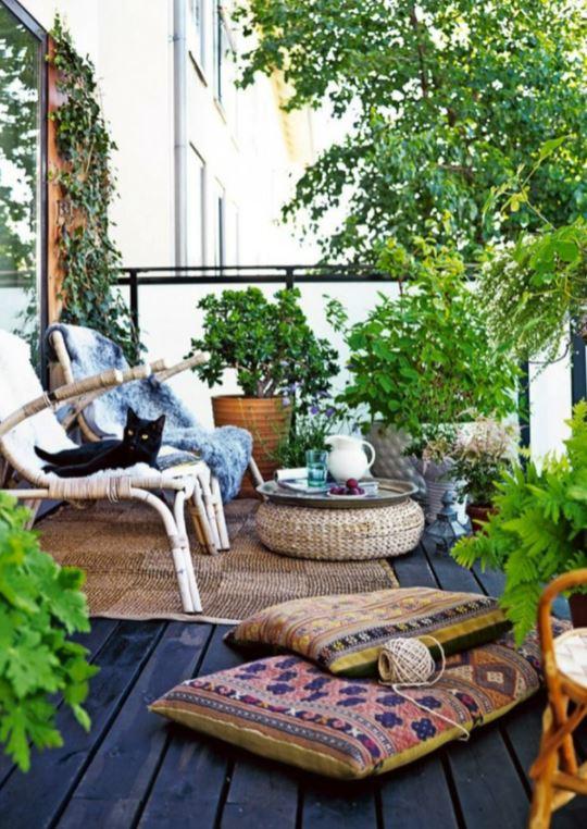 How Environmentally Friendly Are Balcony Plants?